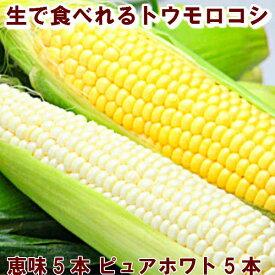 とうもろこし 送料無料 北海道富良野産 2色入り ピュアホワイト5本・恵味5本【10P03Dec16】