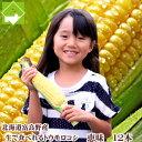 生で食べれるトウモロコシ!北海道富良野産 恵味(めぐみ)2Lサイズ 12本入り【送料無料】【10P03Dec16】