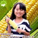 【平成30年発送】とうもろこし 北海道富良野産 フルーツとうもころこし 恵味 L〜2Lサイズ 20本入り【送料無料】甘いけど小さい品種