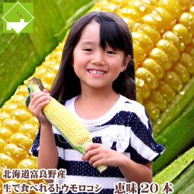 生で食べれるとうもろこし 北海道富良野産 フルーツとうもころこし 恵味 L〜2Lサイズ 20本入り 送料無料甘いけど小さい品種別途送料の発生する地域あり