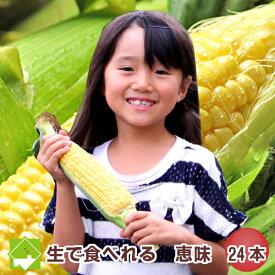 生で食べれるとうもろこし 北海道富良野産 恵味24本入り【あす楽対応_北海道】