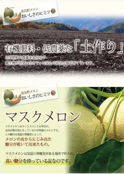 北海道富良野産赤肉メロン2L2玉【送料無料】【お中元ギフト】【17070916cp】