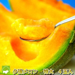 北海道 夕張メロン 特大2kg以上 4玉入り 【送料無料】