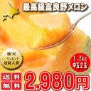 メロン 北海道富良野産赤肉メロン 1.2キロ以上 2玉入り送料無料