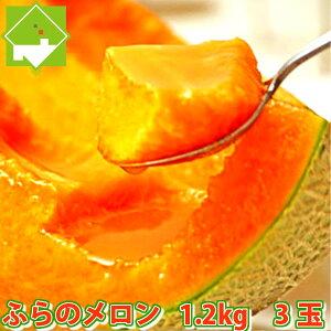 メロン 北海道富良野産 赤肉メロン 1.2kg以上 3玉入り【送料無料】 ポッキリ【お中元対応】  【10P03Dec16】