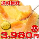 北海道富良野産 最高級 赤肉 2Lサイズ 2玉入り【送料無料】【10P03Dec16】