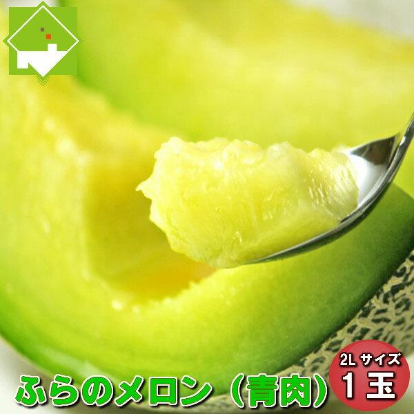 メロン 北海道 富良野産 青肉 秀品 2Lサイズ1玉 送料無料 お中元・ギフト対応可能