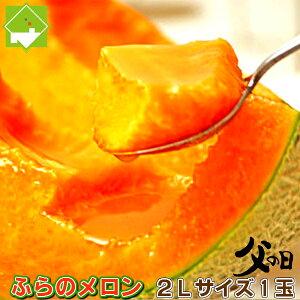 メロン 【父の日ギフト配送】北海道富良野産 赤肉メロン 2Lサイズ 1玉 【送料無料】