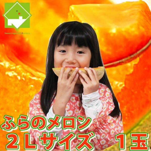 ふらのメロン 北海道 富良野産 赤肉 2Lサイズ 1.5kg以上1玉 送料別