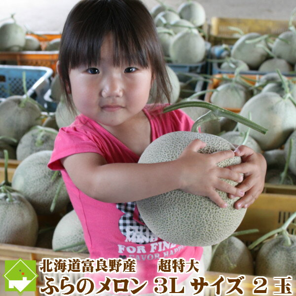 ふらのメロン 北海道 富良野産 赤肉 超特大 3Lサイズ 2玉 お中元ギフト対応 送料無料