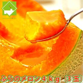 北海道富良野産 ご家庭用 赤肉メロン 4kg(3玉入り)送料無料