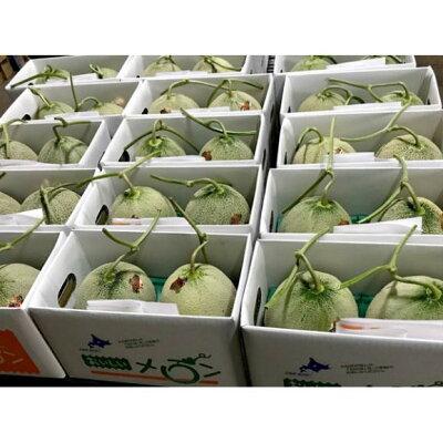 北海道富良野産赤肉メロン2L2玉【送料無料】【お中元ギフト】【05P09Jul16】