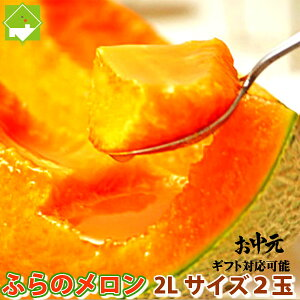 北海道富良野産 赤肉メロン2L 2玉 【送料無料】【お中元ギフト】