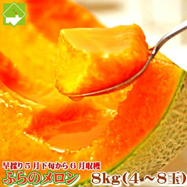 【北海道富良野産 赤肉メロン 8kg(5〜6玉入り)】 【送料無料】【父の日】【お中元ギフト】 【10P03Dec16】