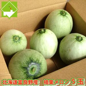 北海道富良野産 摘果メロン(テッカメロン) 5玉(1kg前後)