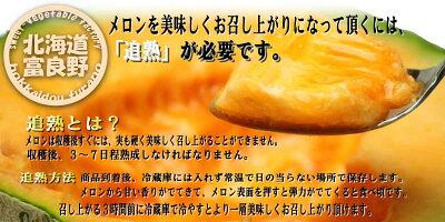 訳ありメロン北海道富良野産赤肉メロン訳あり8キロ入り(4〜8玉)【業務用】【訳まち】【ワケ待ち】【10P03Dec16】