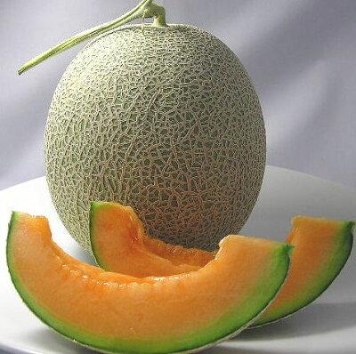 juicymelon