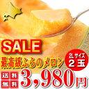 【お中元対応】北海道富良野産 赤肉メロン 2Lサイズ 2玉(1玉1500以上)【送料無料】【10P03Dec16】