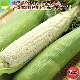 生で食べれる 白いとうもろこし 北海道富良野産 ピュアホワイト 5本