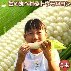 白いとうもろこし 北海道 富良野産 ピュアホワイト 5本