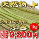 【ご予約販売】北海道ふらの産 天然 無農薬 ふき(フキ) 1kg 【送料無料】【10P03Dec16】