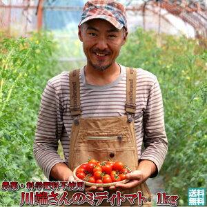トマト 北海道 当麻産 のんの畑の ミディトマト 1kg