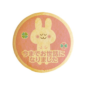 Cookie message ever became rabbit gifts show cookies-thank you