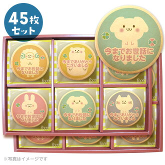 Message cookie animals thank you set (45 pieces) celebrations, gifts, show cookies