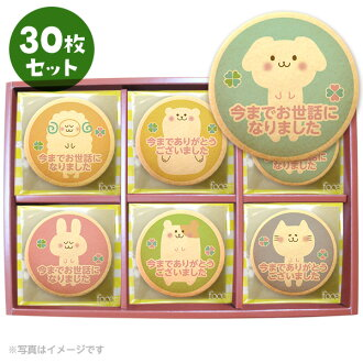 Bestselling Retirement Gift 30pcs (including box・Colorful Animals)