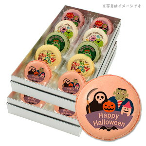 ハロウィン お菓子 メッセージマカロン モンスターたちが大騒ぎ パンプキンナイト 20個セット 手作り スイーツ ギフト