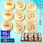【3箱セット】お中元 御中元 ギフト 低糖質プリント最中 れあちいず味 1箱9個入り 送料無料 レアチーズ 冷たいアイスタイプ