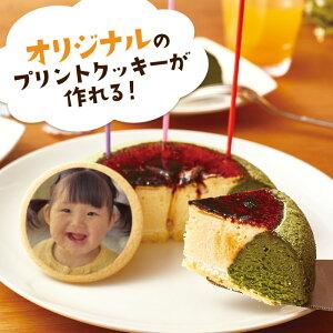 送料無料 ハロウィン 七五三 人気 お取り寄せ スイーツ 天空のチーズケーキ利休(抹茶) バースデー 5号サイズ オリジナルクッキー 誕生日 ギフト スフレ チーズケーキ 洋菓子 お菓子 フォチェ