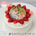 誕生日ケーキ 写真ケーキ イラストケーキ プリントケーキ バースデーケーキ 5号(4-6人...