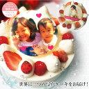 写真ケーキ 誕生日ケーキ 子供 【 5号 (4〜6人分) 】 プリントケーキ ケーキ スイーツ ギフト バースデーケーキ キャ…