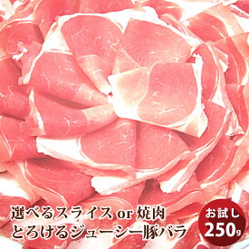 【冷凍】 国産豚ウデ切り落とし250g(250g×1パック)【国産 香川県 豚肉 ウデ うで 切り落とし 切り落し 炒め物 冷凍 豚】