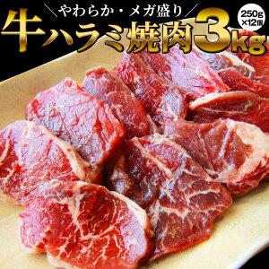 牛 ハラミ 焼肉(サガリ)3kg(250g×12P)牛肉 メガ盛り (*当日発送対象) 赤身 贅沢 おトク お徳用 送料無料 アメリカ産 あす楽 肉 通販 お取り寄せ グルメ アウトドア お家焼肉 レジャー 送