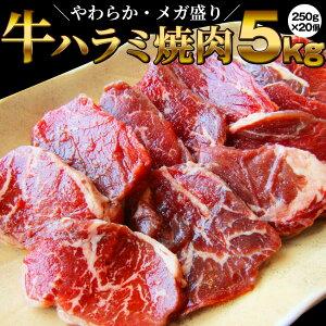 牛 ハラミ 焼肉(サガリ)5kg(250g×20P)牛肉 メガ盛り バーベキュー用 美味しい ホットプレート 焼肉セット 焼肉 ランキング1位(*当日発送対象) 赤身 贅沢 BBQ やきにく おトク お徳用 送料