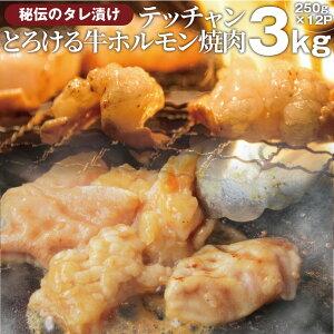 送料無料 冷凍 牛テッチャン タレ漬け ホルモン ( シマチョウ ) 3kg (250g×12袋) 焼肉用 お得 タレ 秘伝 焼肉 やきにく アウトドア お家焼肉 レジャー バーベキュー 肉 食材 セット バーベキュ