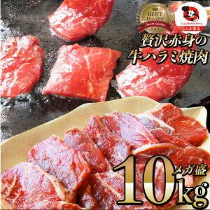 牛 ハラミ 焼肉(サガリ)10kg(250g×40P)牛肉 メガ盛り (*当日発送対象) 赤身 贅沢 おトク お徳用 送料無料 アメリカ産 あす楽 肉 通販 お取り寄せ グルメ アウトドア お家焼肉 レジャー 送