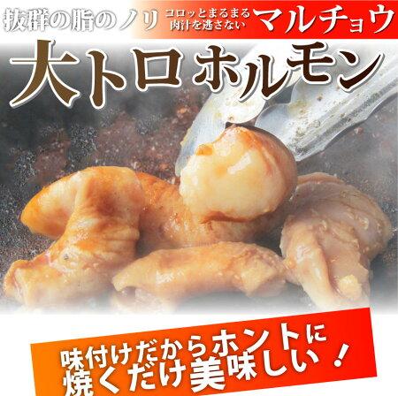 【送料無料】【冷凍】タレ漬けホルモン(マルチョウ)焼肉用買えば買うほどオマケ付き!