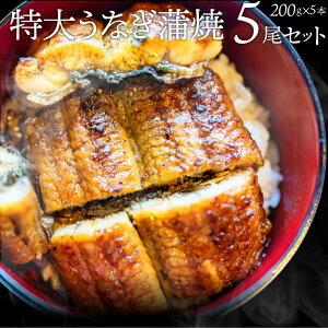うなぎ蒲焼 5本入り(200g×5)たれ・山椒付き 鰻 かば焼き 土用 丑の日 湯煎 レンチン レンジOK 簡単解凍するだけ 惣菜 冷凍食品 お取り寄せ グルメ
