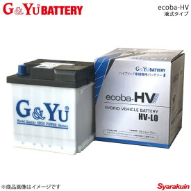 G&Yu BATTERY/G&Yuバッテリー ecoba-HVシリーズ 液式タイプ バッテリータイプ:液式6栓開放/側面排気方式 HV-L2