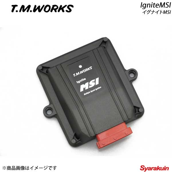 T.M.WORKS/ティーエムワークス Ignite MSI フルダイレクト点火専用+車種別専用ハーネスセット VOLKS WAGEN Golf5 FSI 1KBAG/1KBLP