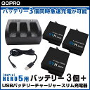 【GoPro】HERO5 ver2.60、ver2.51以下対応 GoPro HERO6 ver2.01、01.60 対応 SYH SHOPオリジナル互換バッテリー3個(保護ケース入り)+USBトリプルバッテリー充電器 GoProバッテリー3個同時急速充電が可能 GoPro5 S-10