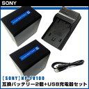 【SONY】 ソニー 安心の大容量 NP-FV100 互換 バッテリー 2個 + USB充電器 セット