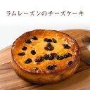 【香のか】 冷蔵 ラムレーズンのチーズケーキ 5号 滋賀県お取り寄せグルメ 滋賀スイーツ 完全受注生産 ベイクドチーズ…