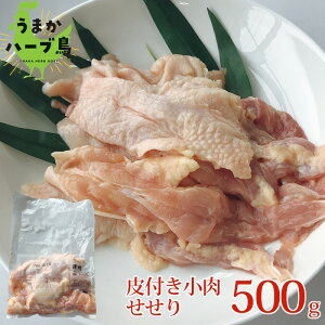 【冷凍】九州産 うまかハーブ鳥 皮付き小肉 せせり 500g【業務用 国産 冷凍 せせり セセリ ネック 小肉 希少 皮付き】