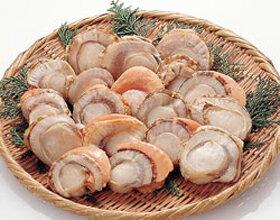 ボイルホタテ(ひも付) 1kg(冷凍食品 IQF バラ凍結 業務用食材 貝 ホタテ 帆立 ほたて ボイル ひも付)