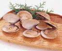 天然はまぐり(殻付) 500g(約20〜25個入)(業務用食材 貝 冷凍食品 はまぐり 殻付)