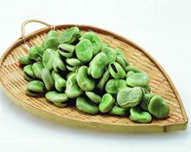 冷凍そら豆 500g(冷凍食品 簡単 時短 冷凍野菜 業務用食材 まめ 豆 マメ)